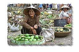 Fruit sellers in Cholon wearing Non Bai Tho